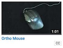 Ortho Mouse